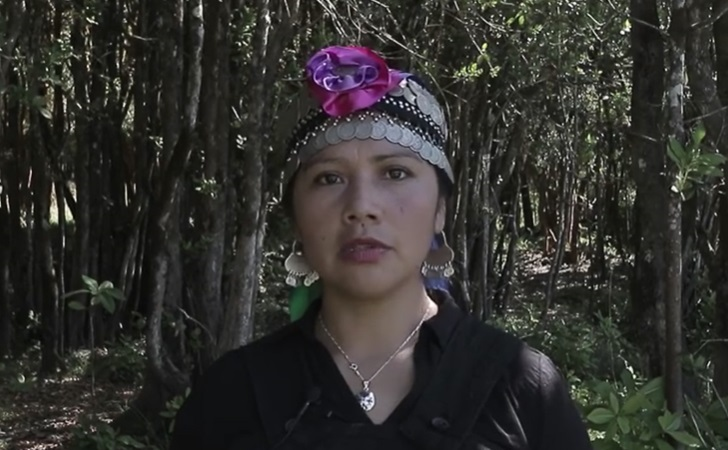 Natividad Llanquileo, candidata Mapuche constituyente AVFF